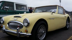 aston martin db2(0.0), ac ace(0.0), coupã©(0.0), automobile(1.0), vehicle(1.0), automotive design(1.0), austin-healey 100(1.0), austin-healey 3000(1.0), antique car(1.0), classic car(1.0), vintage car(1.0), land vehicle(1.0), convertible(1.0), sports car(1.0),