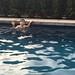 Swimming with Scott (Nov. 24, 2014)