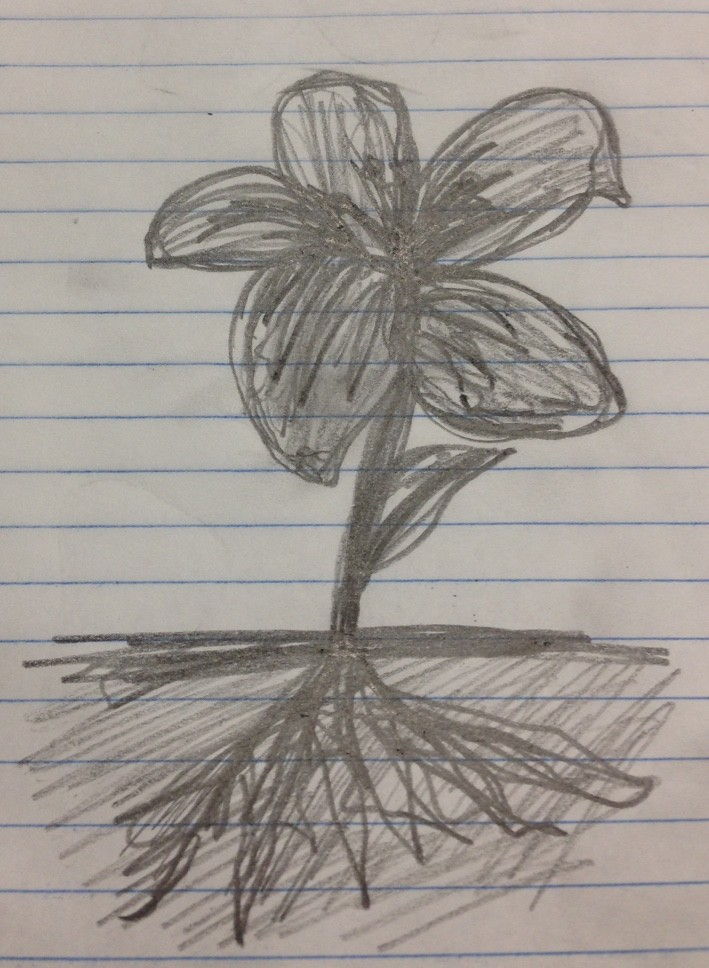 Droodle Flower