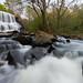 Welti Falls by Longleaf.Photography