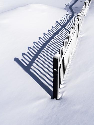 Fence Shadow