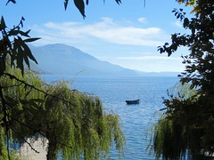 Boat, trees and lake Ohrid