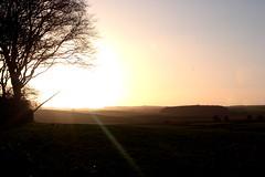 Sunset Above Fields