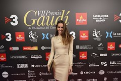 Catifa vermella VII Premis Gaudí (40)