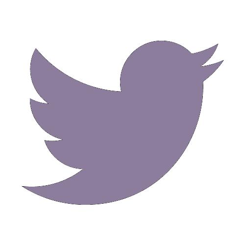 Paint Twitter