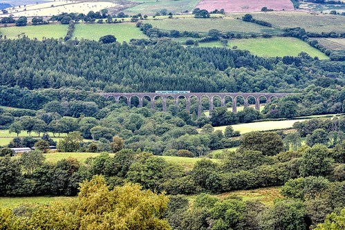 uk greatbritain railroad trees summer wales train countryside nikon railway viaduct gb dmu atw cynghordy arrivatrainswales class150 d7100 heartofwales