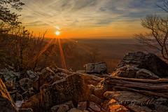 Sun Rays & Flares