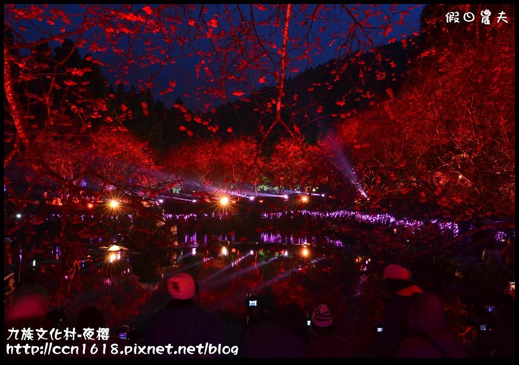 九族文化村-夜櫻DSC_4877