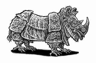 Dürer rhino from memory