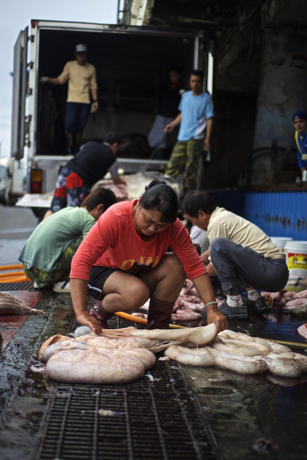Hualien seafood market
