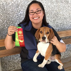 At least he is consistent! Dylan earns his 2nd Novice Obedience leg with a score of 175 (again)! We got 2 place (out of 2 qualifiers). I am so proud of this little beagle as I was another puddle of nerves in the ring again! One more leg to go... Could we