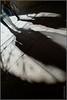 Passageway shadows /2