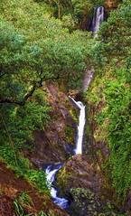 Wairaka Falls, Part 2...