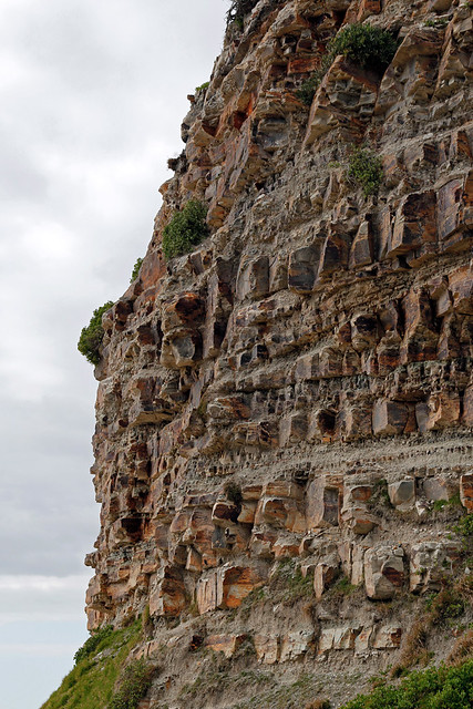 Header of stratigraphy