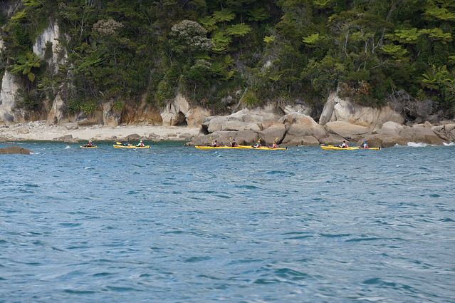 Kayakers in Abel Tasman Natl Park