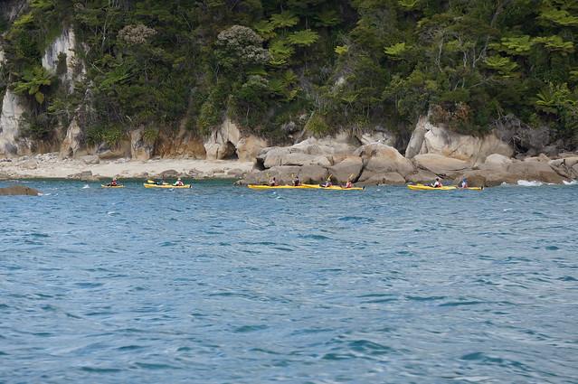 Kayakers in Abel Tasman Natl Park