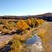 D70s Burro Creek (24)e - Burro Creek Wilderness Area