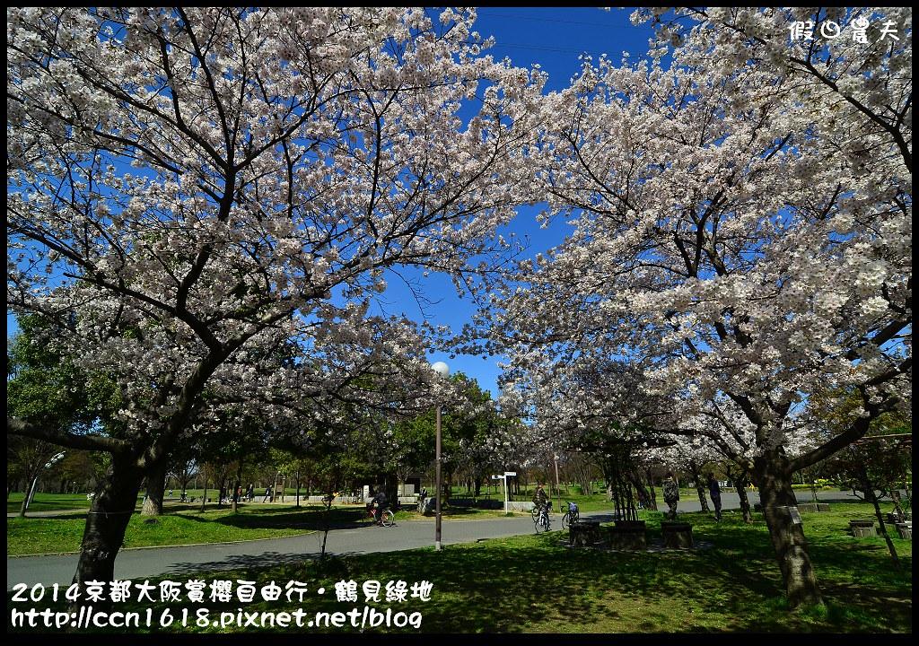 2014京都大阪賞櫻自由行.鶴見綠地DSC_1277