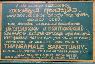 Sri Lanka. Haputale. Thangamale sanctuary.