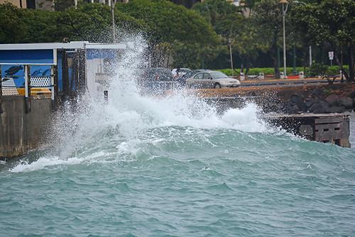 wave makai side Pier 7