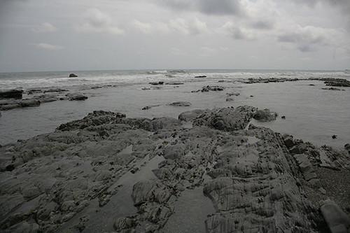 礁岩潮間帶。攝影:朱雲瑋