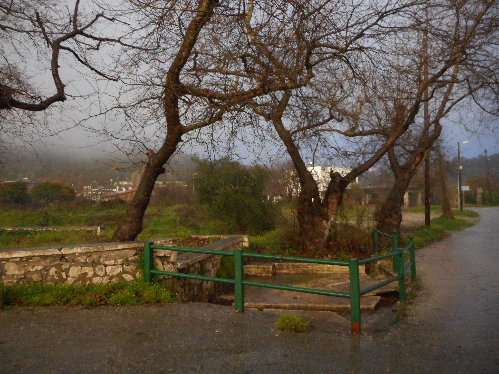 Βροχερός ο καιρός τις τελευταίες μέρες του χειμώνα στη Ψίνθο