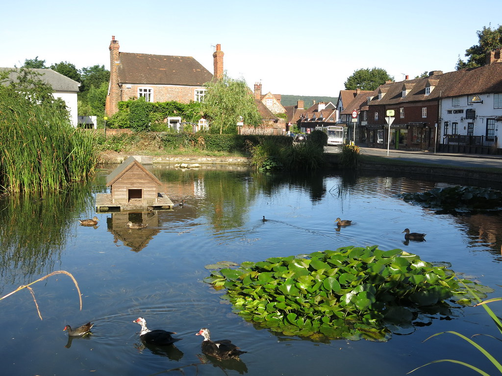 Otford duck pond The duck house here is the smallest listed structure in England