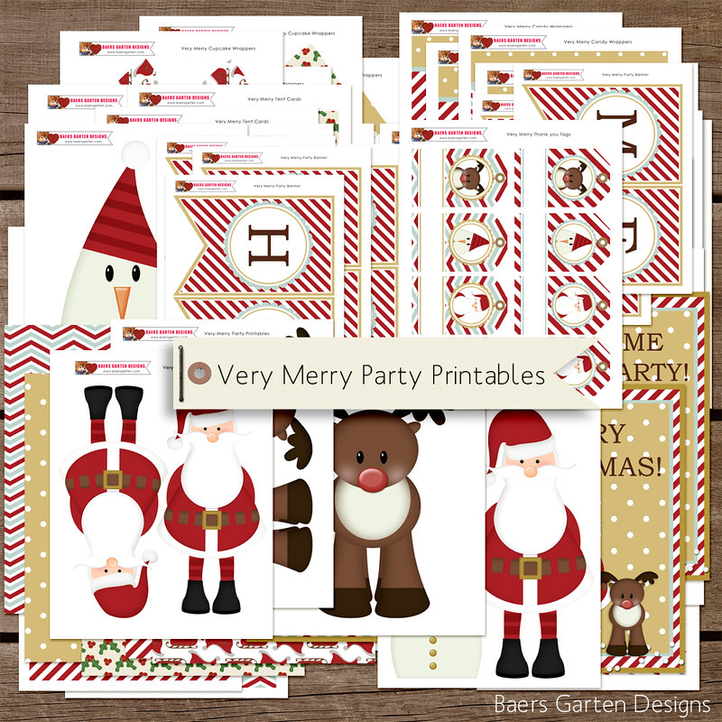 Very Merry Birthday and Christmas Party