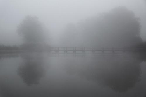 Aux yeux la brume est comme un voile évanescent