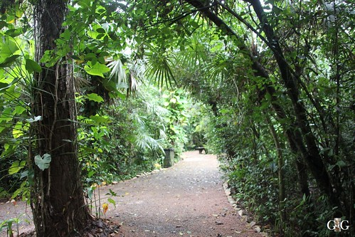 Zoo Karibikinsel Belize 19.11.2014 53