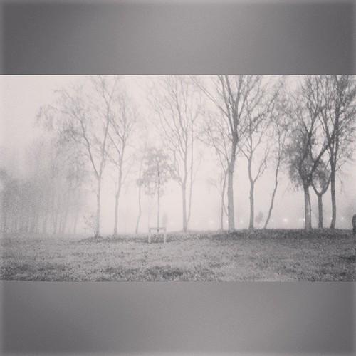 Foggy Day Foggy Foggy Day