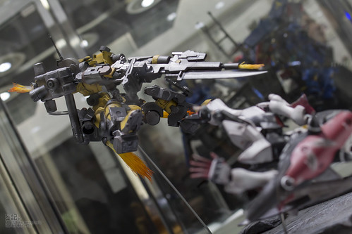 GBWC2014_World_representative_exhibitions-261