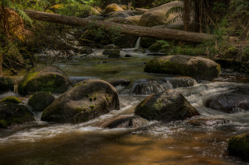 river landscape hdr noojee toorongo