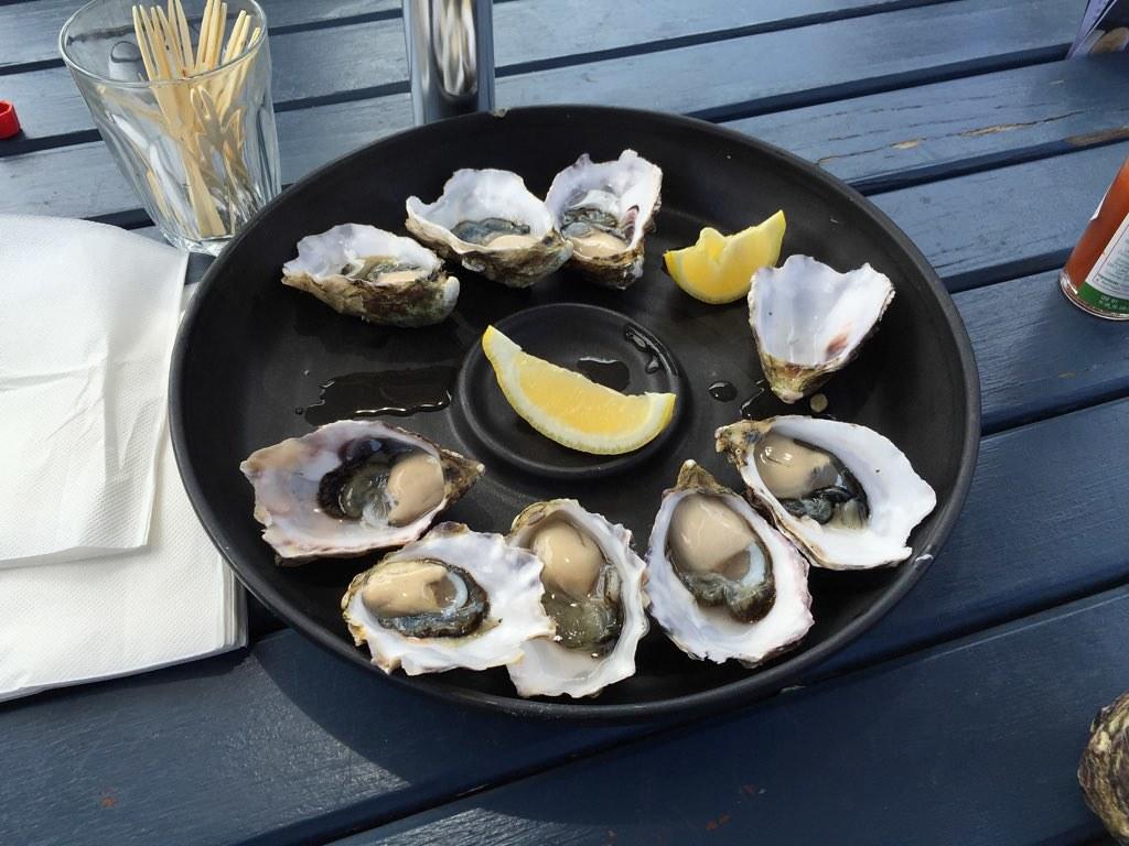 Fresh Oyster tasting in Bruny Island