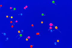 Party Spermatozoons   ///   Espermatozoides de Fiesta