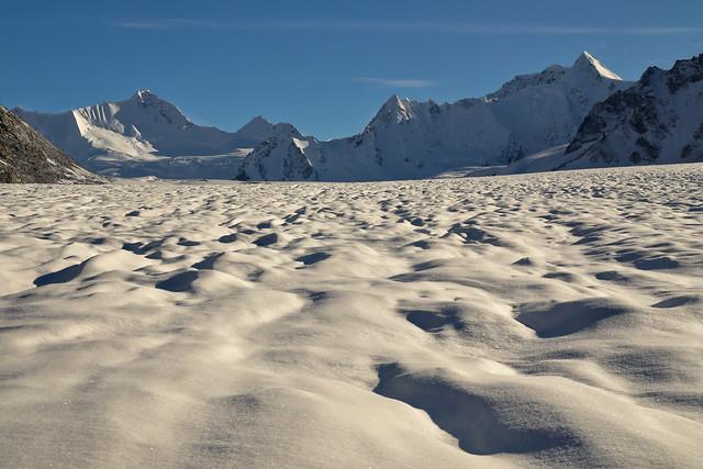 Lee Petersen -... - Snow Day!