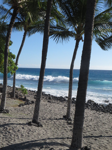 ocean sea beach nature water ecology palms island hawaii polynesia sand marine rocks paradise surf waves pacific horizon shoreline palmtrees pacificocean shore foam tropical bigisland aquatic kona kailuakona 2015 konacoast hawaiicounty aliidrive hawaiiisland westhawaii northkona pahoehoebeachpark barryfackler barronfackler