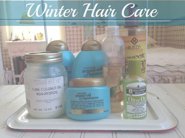 Winter Hair Care Banner