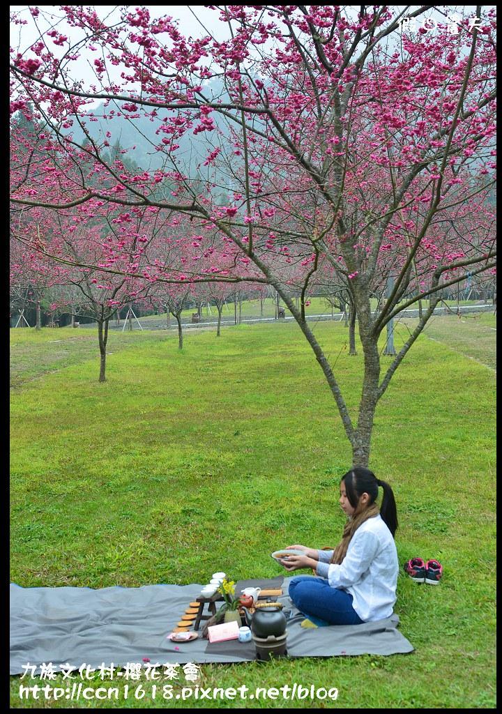 九族文化村-櫻花茶會DSC_4393
