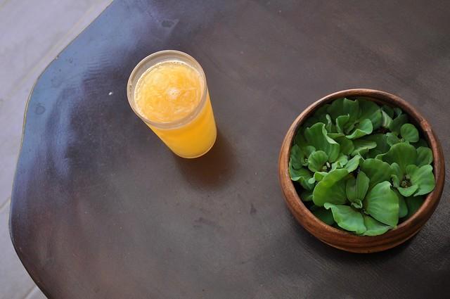 Morod Juice