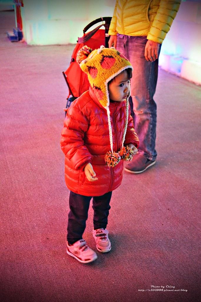 台中高鐵-2015正宗哈爾濱冰冰燈冰雕展-0