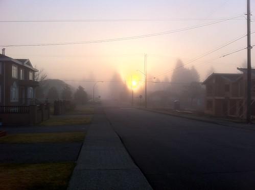 morning canada fog sunrise britishcolumbia burnaby