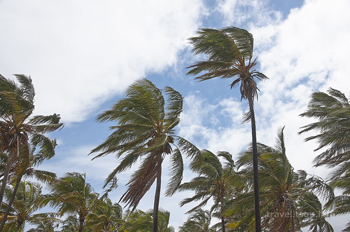 【写真】2015 世界一周 : アナケナビーチ/2021-04-05/PICT8648