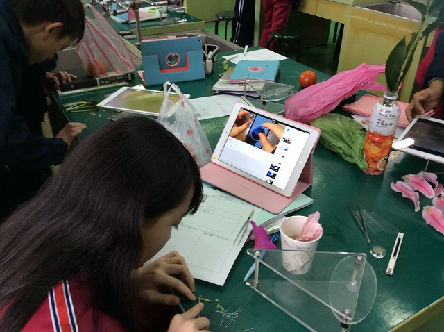 學生用iPad觀察花和果實12