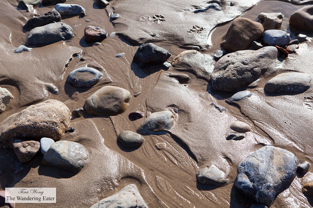 Textures of wet sand, tide and rocks on Langland Bay Beach