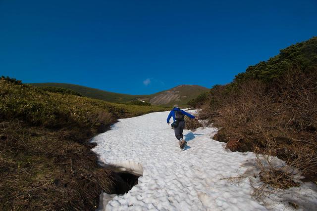 20150614-北海道羊蹄山(2日目)-0428.jpg