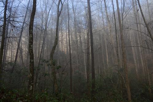 Tom Miller Trail - 8