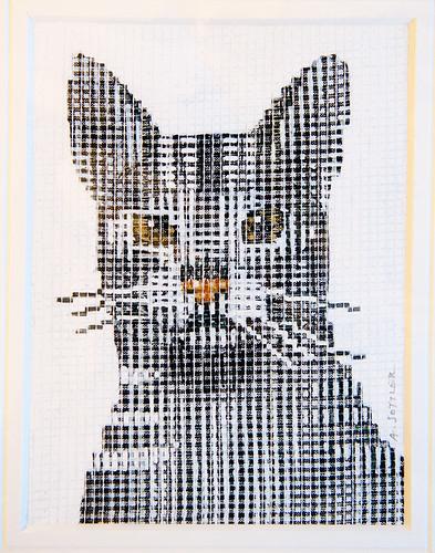 Original Cat Print by Alenka Sottler
