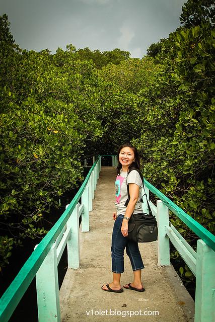 Mangrove Lucy3-8707rw