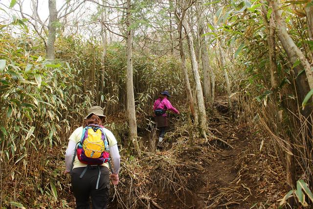 2014-05-06_02214_九州登山旅行.jpg